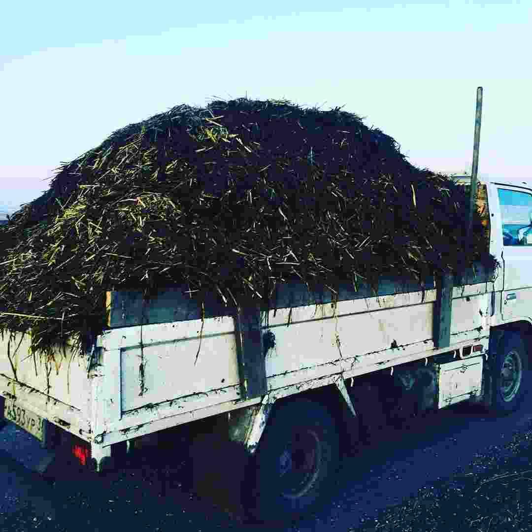 доставить навоз в Ставрополь